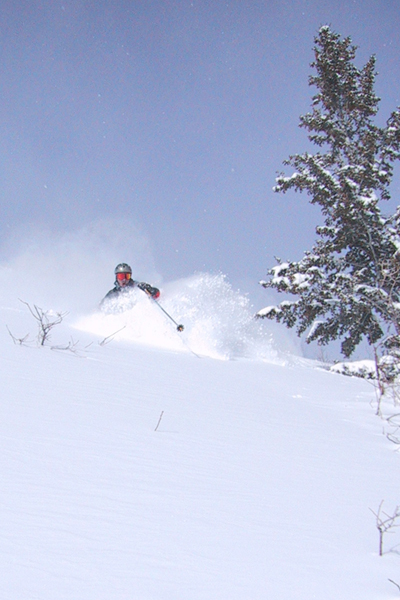 Powder Skiing in Utah